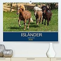 Islaender - icelandic horses (Premium, hochwertiger DIN A2 Wandkalender 2022, Kunstdruck in Hochglanz): Mit den Wikingerpferden durch das Jahr (Monatskalender, 14 Seiten )