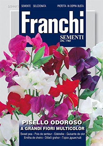 Franchi - FDBF_344-1 - Mélange de graines de pois de senteur Grandiflora