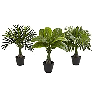 Nearly Natural Mini Areca, Fountain and Banana Palm Trees (set of 3),13 – 15 x13 – 15 x15.5 – 16