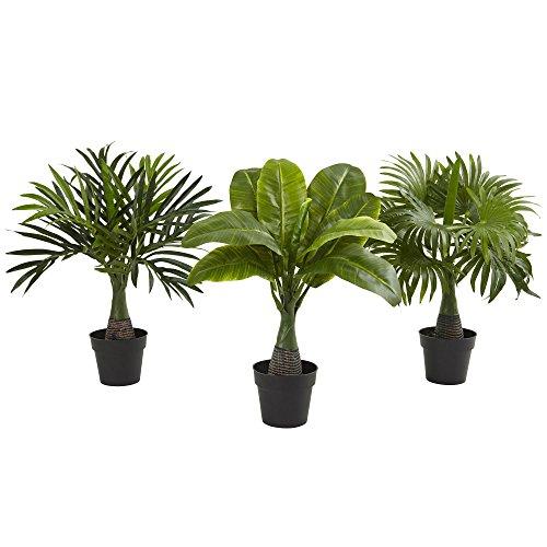 Nearly Natural Mini Areca, Fountain and Banana Palm Trees (set of 3)