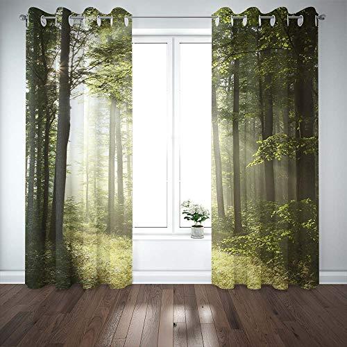 cortina hojas fabricante Musesh