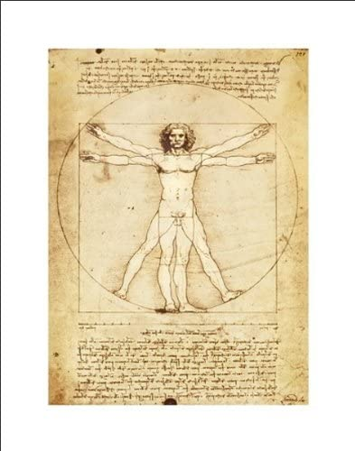 Amazon Com Leonardo Da Vinci Vitruvian Man Proportions Of The Human Figure Art Print Poster 11x14 Unframed Print Posters Prints