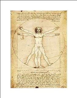 Leonardo da Vinci Vitruvian Man Proportions of The Human Figure Art Print Poster (11X14 UNFRAMED Print)