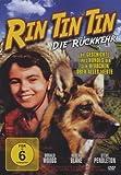 Rin Tin Tin-die Rückkehr