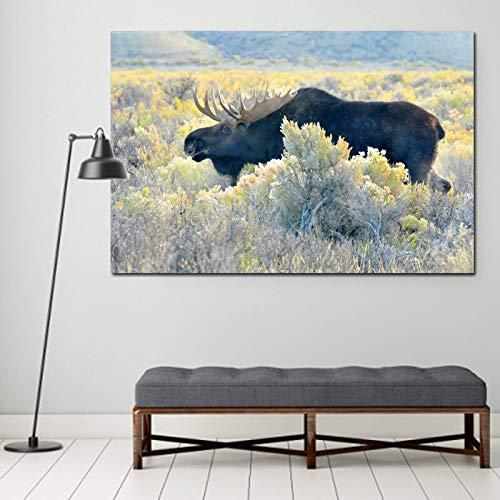 wZUN Pintura de la Lona del Arte Animal Imagen de la Pared de los Alces Calientes, Arte de la Pared de la Sala de Estar impresión del Cartel decoración Pintura 50x70cm