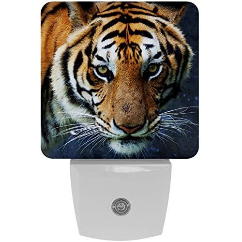 Tiger Animal Print Plug-in LED Night Light Light Lámpara de noche para niños con atardecer hasta el amanecer Auto Motion Senor Adecuado para dormitorio, baño, escaleras, cocina, pasillo