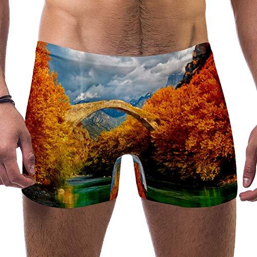 CHINFY Maillots de bain pour homme Motif paysage Konitsa Pont Aoos River Maillots de bain Boxer - Multicolore - L