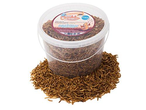Chubby Mealworms Mehlwürmer getrocknet, Wildvogelfutter, 5 Liter