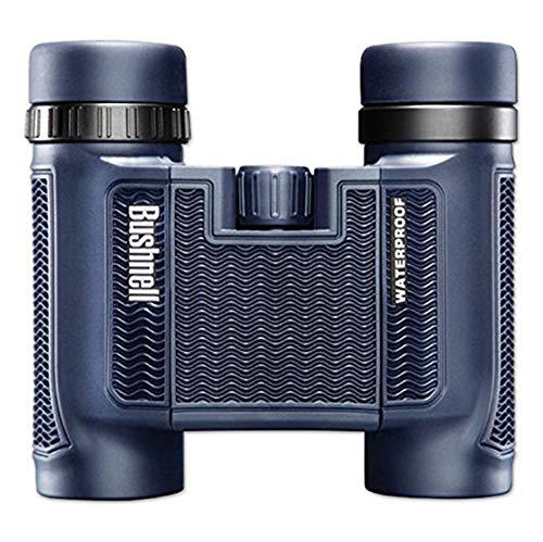 Bushnell 138005 H2O Waterproof/Fogproof Compact Roof Prism Binocular, 8 x 25-mm, Black