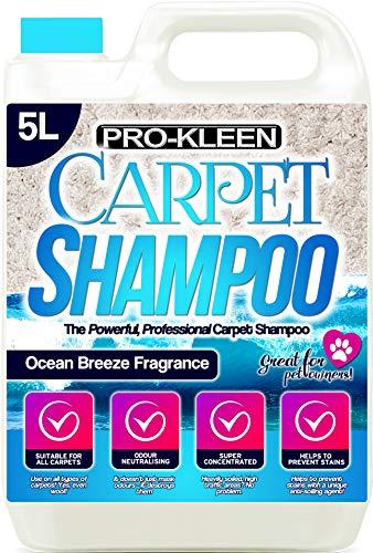 Pro-Kleen Professionelles Teppich- & Polster-Shampoo, frischer Meeresduft, 5 l Hochkonzentrat-Reinigungslösung, geeignet für alle Maschinen, flüssig, 5 Liter