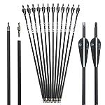 Musen 30 Inch Carbon Archery Arrows, Spine 500