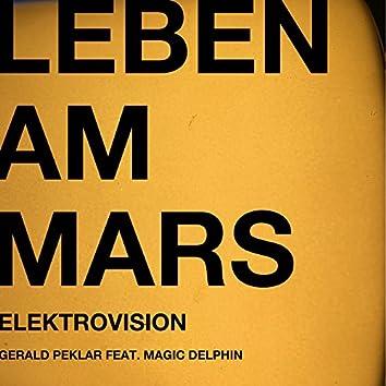 Leben am Mars (Elektrovision Mix)