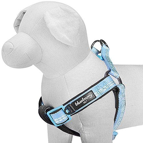 Blueberry Pet 'Step-in' Geschirre Neu 3M Reflektierend 40-50cm Brust Sommer Pastell Baby-Blau Verstellbares Zugentlastendes Gepolstertes Hundegeschirr, Passendes Halsband Separat Erhältlich