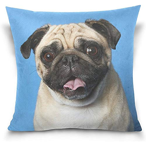 Funny Pug Dog Square Throw Pillow Case Cotton Velvet Cushion Cover