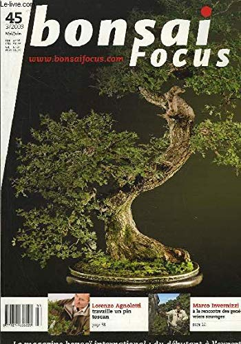 Bonsai Focus N°45 : Lorenzo Agnoletti travaille un pin toscan. Marco Invernizzi à la rencontre des genévriers sauvages.