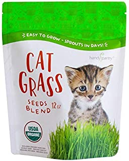 Organic Cat Grass Seed Blend for Planting by Handy Pantry - A Healthy Mix of Organic Wheatgrass Seeds: Barley, Oats, and R...