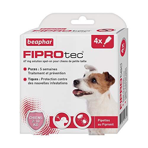 BEAPHAR – FIPROTEC 67 mg – Solution spot-on pour petits chiens (2-10 kg) – À base de Fipronil – Élimine les puces – Protège contre les infestations par tiques et puces – 4 pipettes de 0,67 ml