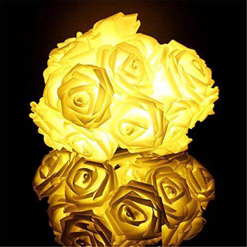 Esamconn Luci della Stringa del Fiore della Rosa di 6,6feet / 2m 20LED Luce Stellata per i Giardini, Le Case, Le Nozze, la Batteria Funziona (Bianco Caldo)