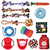 FAYOGOO Small Dog Chew Toys, 12 Packs Dog Rope Toys for Aggressive Chewers, Puppy Teething Toys Tough Chew Toys and Squeaky Dog Toys for Small Medium Breed