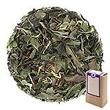 Núm. 1104: Té blanco 'Pai Mu Tan mediterráneo' - hojas sueltas - 250 g - GAIWAN® GERMANY - té blanco de China, cártamo (alazor), caléndula
