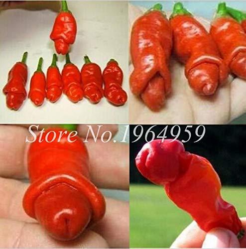 Pinkdose 100 Teile/beutel Chilly Red Hot Peter Pfeffer Chilly Bonsai Neuheit Lustige Paprika Bonsai Pflanzen Gemüse Für Zuhause & amp; Garten: gemischt