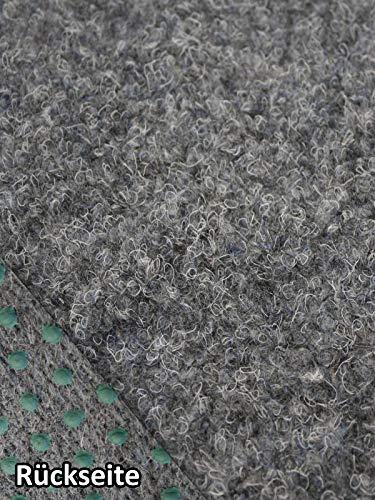 Rasenteppich Kunstrasen Premium grau Velours Weich Meterware, verschiedene Größen, mit Drainage-Noppen, wasserdurchlässig (400x250 cm)