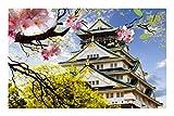Qilo Japón Templo de Sensoji Paisaje Rompecabezas 500-3000 Puzzles for Adultos - Juguetes educativos en el hogar Regalo Personalizado (500/1000/1500/2000/3000 Piezas) (Size : 1500pieces)