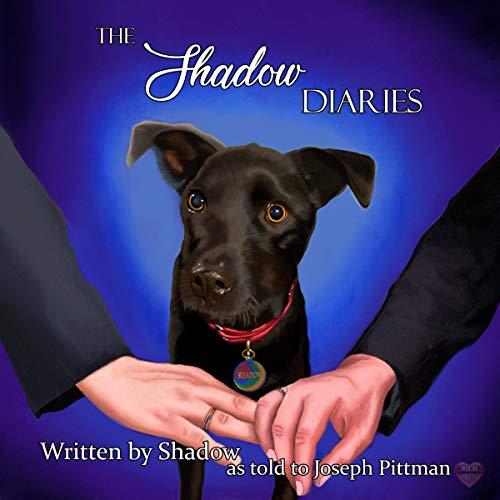 The Shadow Diaries Titelbild