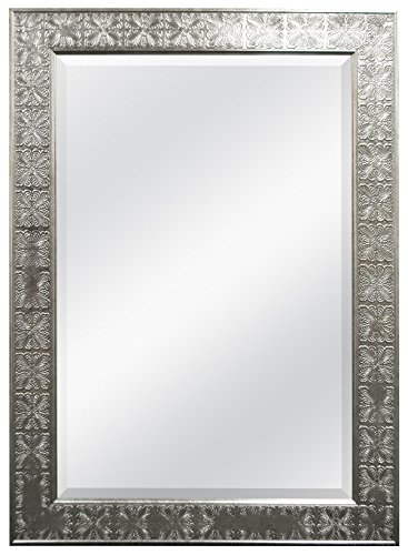 MCS 24x36 Inch Stamped Medallion Wall Mirror, 32x44 Inch Overall Size, Champagne -