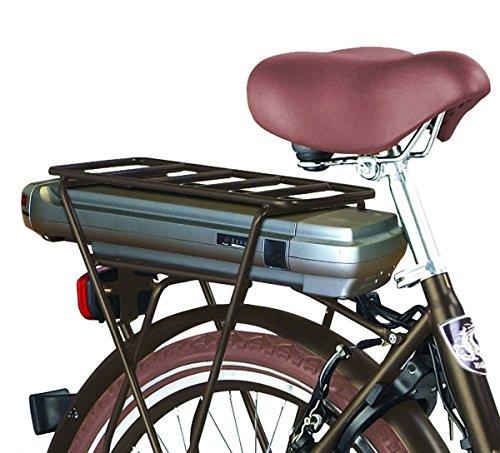 Lastenfahrrad E-Bike Voozer Elektro Lastenrad Bild 5*