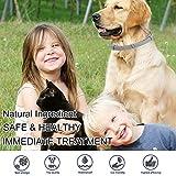 IMG-2 segminismart collare antipulci cane per