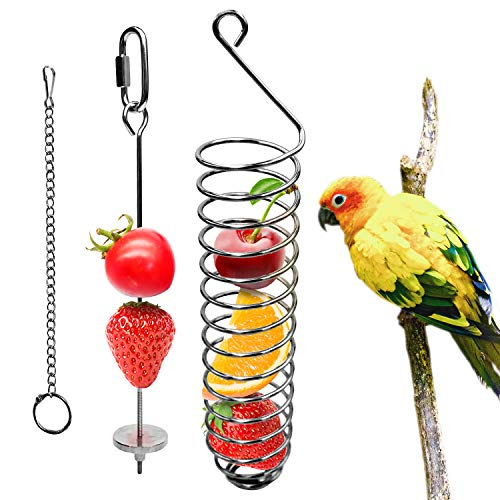 Bac-kitchen Bird Food Holder, Parrots Foraging Toys for Birdcage, Hanging Stainless Steel Bird Treat Feeders, Bird Food Basket for Fruit Vegetable Grain Wheat, Bird Feeder Toy for Conures (Basket)