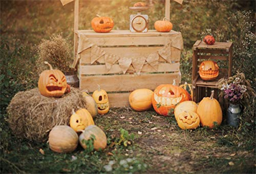 7x5ft Cotton Cloth YouTube Photo Video Shooting Props LHFS1009 Halloween Party Decor Supplies Fantasy Night Pumpkin Backdrop for Photography