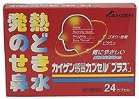 【指定第2類医薬品】カイゲン感冒カプセル「プラス」 24カプセル