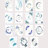 Carte étape grossesse, cartes mois grossesse florale bleu, 15 cartes papier photo finition glacé