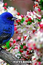 """Notebook: Blue Bird , Journal for Writing, College Ruled Size 6"""" x 9"""", 110 Pages"""