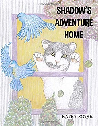 Shadow's Adventure Home