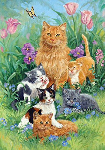 Toland Home Garden 109477 Meadow Cats 28 x 40 Inch Decorative, House Flag (28