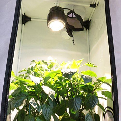 BloomLED LED Horticole 60W CREE CXB3590 - SpectraBUD X60 - Waterproof IP65 - Culture de plantes croissance et floraison 50cm x 50cm