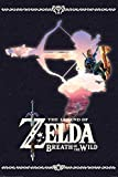 Pyramid America Zelda Breath of The Wild Silhouette Video Game Gaming Cool Wall Decor Art Print Poster 24x36
