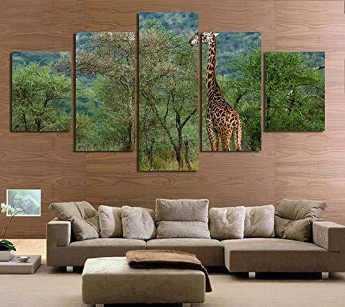 WWMJBH canvas prints 5 panelen schilderijen Artwork 200X100cm - Modern schilderij op canvas 5 dieren giraffe decoratie landschap poster woonkamer muurkunst afbeelding Hd afdrukken - kunstwerk afbeeldingen
