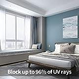Zoom IMG-2 vpcok pellicola per vetri finestre