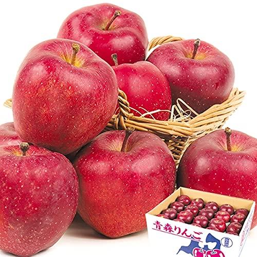国華園 りんご 青森産 スターキング 10� 1箱 食品