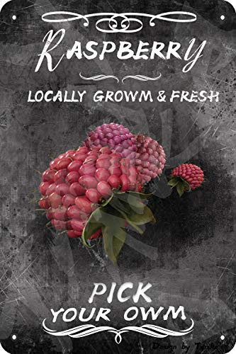 FruitRaspberry Locally Growm&Fresh Pick Your Owm 20X30 CM Iron Retro Look Decoration Crafts Sign for Home Kitchen Farm Garden Restaurant Inspirational Quotes Wall Decor