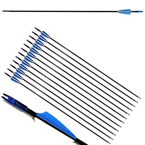 ZSHJG 12pcs Flechas de Fibra de Vidrio de Tiro con Arco de 31 Pulgadas Spine 900 Flechas de Caza con Carcaj de Flecha para Compuesto Recorvar Arco