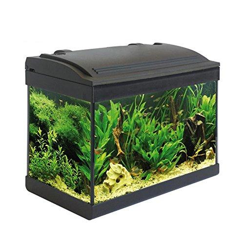 Acquario Milo accessoriato 43x24x36cm 25 Litri completo di filtro pompa illuminazione