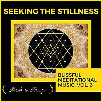 Seeking The Stillness - Blissful Meditational Music, Vol. 6
