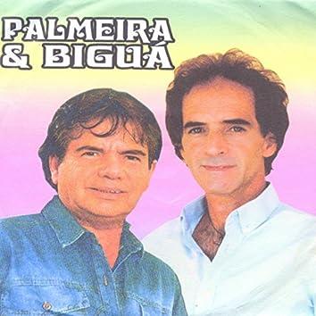 Palmeira & Biguá