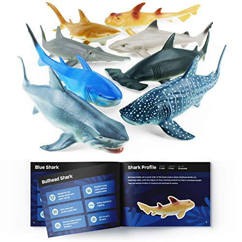 "Boley Shark Toys - 8 Pack 10"" Long Soft Plastic Realistic Shark Toy Set - Toddler Sensory Toys and Birthday Party Favors for Kids"