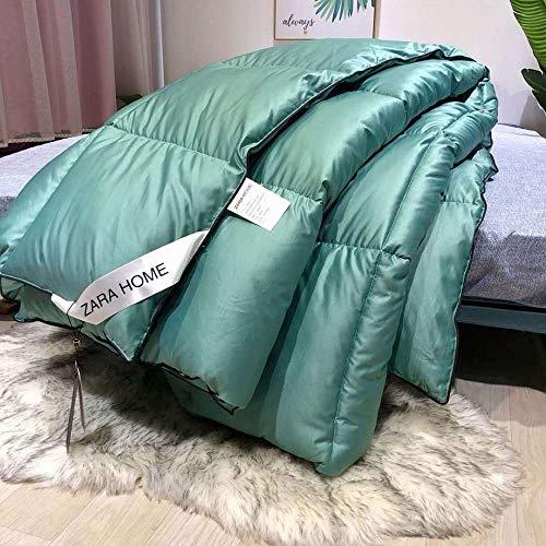 CHOU DAN Twin Duvet Insert,Duvet Winter Quilt-200 * 230cm 3000g_green
